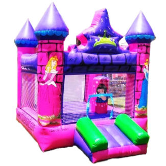 inflable castillo de princesas de disney