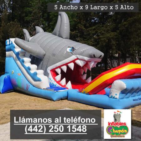 03 | inflable acuatico | renta | queretaro | el tiburon tigre
