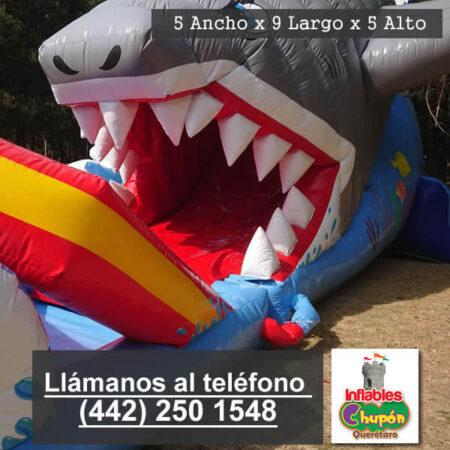 04 | inflable acuatico | renta | queretaro | el tiburon tigre