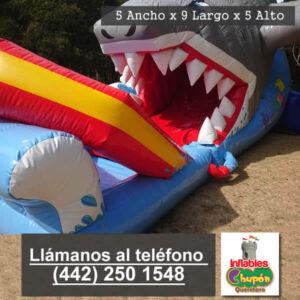 02 | inflable acuatico | renta | queretaro | el tiburon tigre